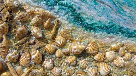 Mare con conchiglie Vendita Quadri Online Quadri moderni Quadri astratti Quadri floreali