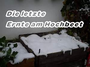 Hochbeet Winterfest Machen : letzte hochbeeternte und hochbeet winterfest machen youtube ~ Orissabook.com Haus und Dekorationen