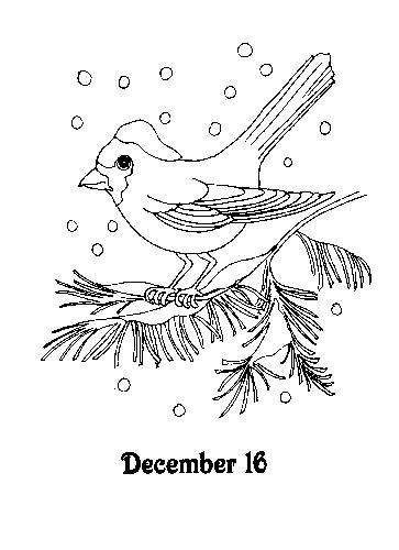 Kleurplaat Vogels In De Winter by Kleurplaat Vogel Op Tak 16 December Advent Kerst