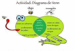 Diagrama De Venn - Orientaci U00f3n And U00fajar