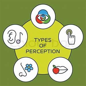Five senses with human organs, five senses icons. Vector ...