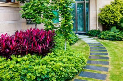 colorful ground cover landscape ideas that reduce grass lovetoknow
