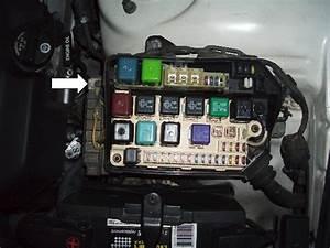 Wolo  U0026quot Big Boy U0026quot  Horn Aka Nautilus Compact Install