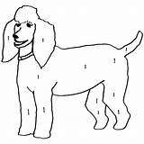 Poodle Skirt Drawing Silhouette Pink Coloring Clipartmag Toy Cut Miniature Getdrawings sketch template