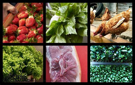 Gids salātiem, garšaugiem un citiem produktiem | Fruit