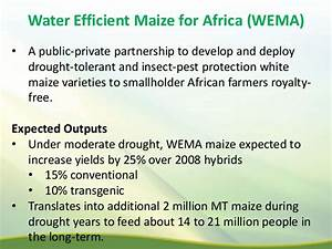 """"""" Harnessing agricultural biotechnology for resilience to ..."""