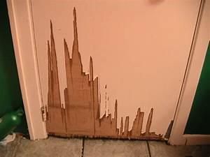 comment reparer une porte en bois With reparer porte en bois enfoncee