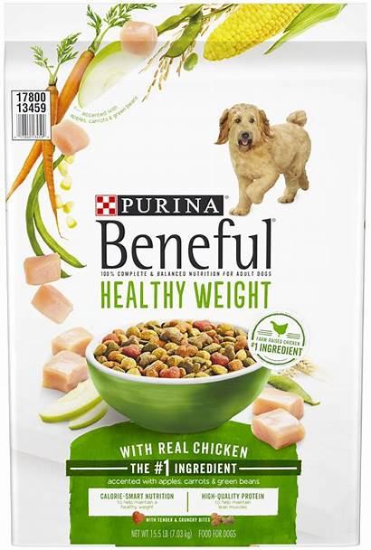 Dog Purina Bag Healthy Beneful Walmart Weight