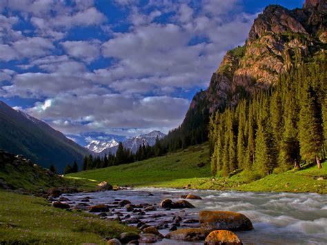 Forest River Desktop Background 594036