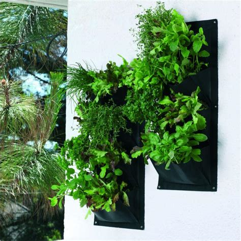 Vertical Herb Garden In Your Kitchen by Objects Of Design 88 Vertical Herb Garden Mad About
