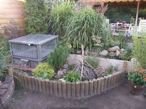 Schildkröten Halten Im Garten  Home Image Ideen