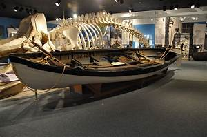 The New Bedford Whaling Museum