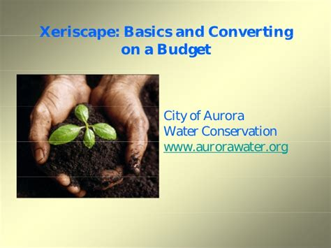 how to xeriscape on a budget xeriscape basics and converting on a budget aurora colorado