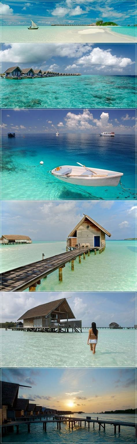Best 25 Sun Island Maldives Ideas On Pinterest Best