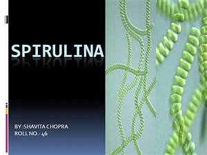 Spirulina 2