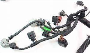 Vw Phaeton Wiring Harness Besi Harness Wiring Diagram