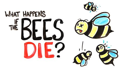 What Happens If All The Bees Die? Youtube