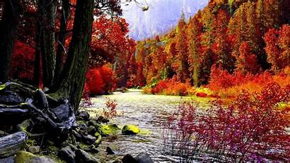 Fall 3d Autumn Leaves Nature Landscape Tree