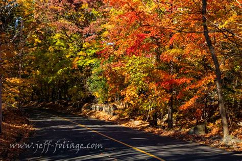 Fall Foliage For October 22nd & 23rd  New England Fall
