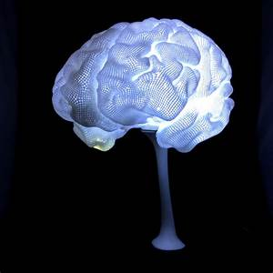 3d Led Lamp Design 3d Printable Radiant Brain From Mri By Create Cafe 3d