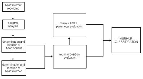 Clas Lifier Block Diagram by Block Diagram Of Sounds Signal Processing