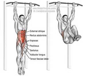 25 best hanging leg raises ideas on pinterest weekly
