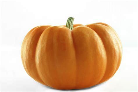 what to make with pumpkin pumpkin baozi danbaoli blog danbaoli blog