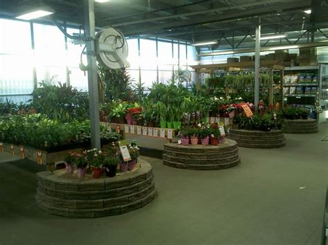 home depot garden center thd craft ideas garden