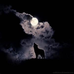 Howl by wyldraven on DeviantArt