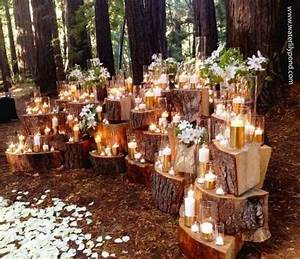 36 Budget-Friendly Outdoor Wedding Ideas for Fall - VIs-Wed