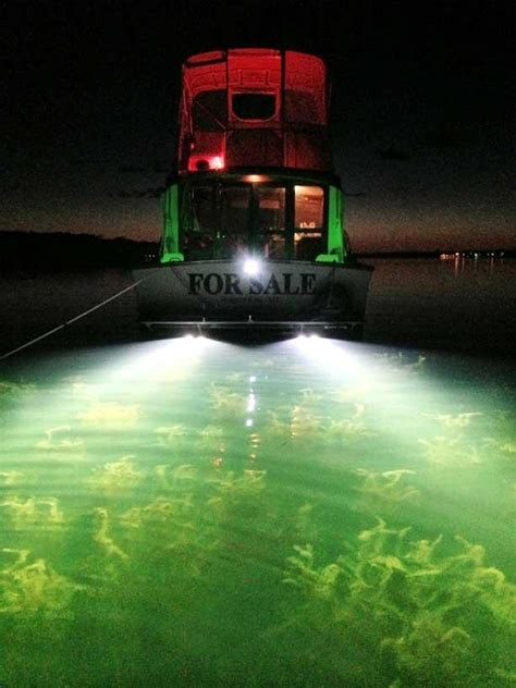 Xenon Underwater Boat Lights by Underwater Thru Hull Boat Xenon Light 12 24v 35w55w