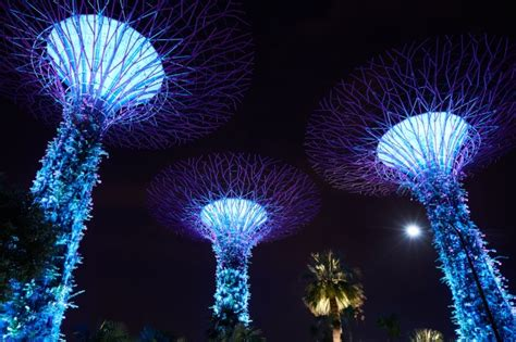 Buildings Night Urban Singapore Nature Photo Free Download