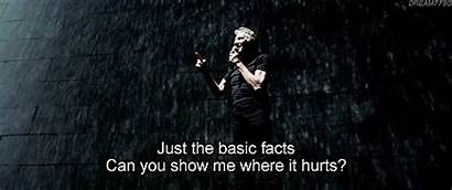 Roger Waters Numb Comfortably There Facts Truth