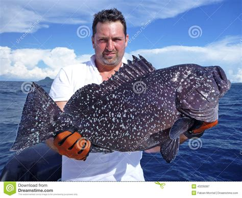 grouper deep sea fish fishing giant preview