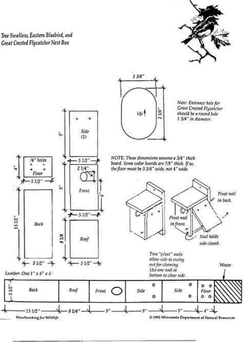 plans  tree swallow nest box pinteres
