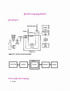27 Gas Chromatography Block Diagram