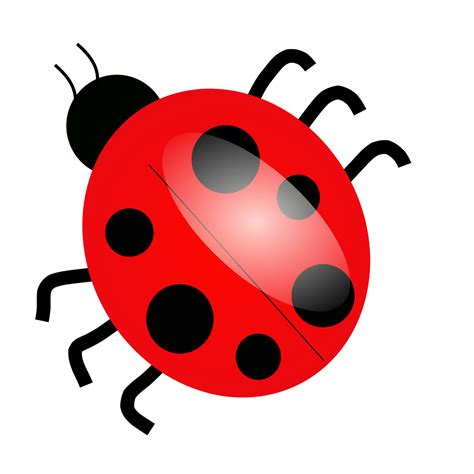 Filetux Paint Ladybugsvg  Wikimedia Commons