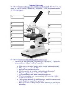 Compound Light Microscope Parts Worksheet