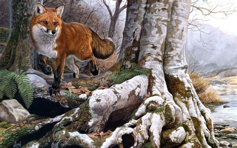Animals Fox Foxes Nature Landscapes Trees Forests Rivers