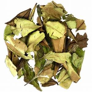 Buy White Tea Loose Leaf - Enjoy Health Benefits of ...