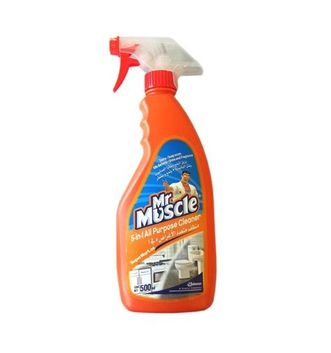 mr 5 in1 all purpose cleaner citrus lime 500ml from
