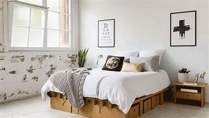 Furniture Cardboard Karton Shockingly Durable Budget Decorating