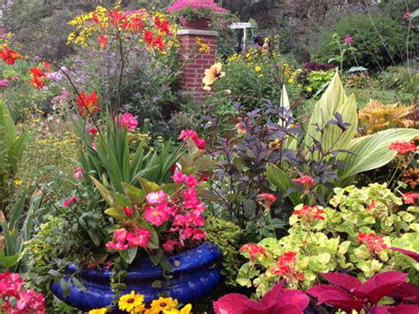 tagawa gardens hours gardening tips gardening ideas at tagawa gardens nursery