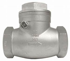 1-1  2 U0026quot  Stainless Steel  316  Swing Check Valve