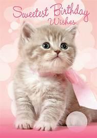 Kitten Happy Birthday Wishes Cat