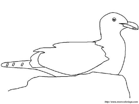 Disegno Gabbiano - disegni gabbiani az colorare