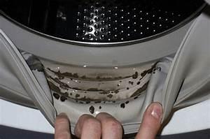 Waschmaschine Gummidichtung Reinigen : wie man eine stinkende waschmaschine wirklich sauber bekommt ~ A.2002-acura-tl-radio.info Haus und Dekorationen