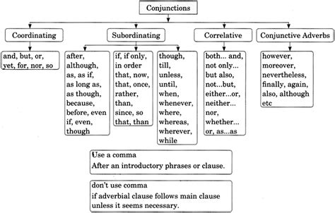 conjunctions exercises  class  cbse  answers