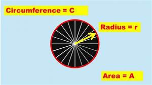 Ratio Of Circumference And Area Of A Circle