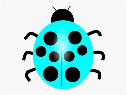 Ladybug Bug Clip Lady Clipart Colorful Silhouette